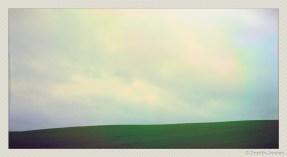 soja phonephotos-13105