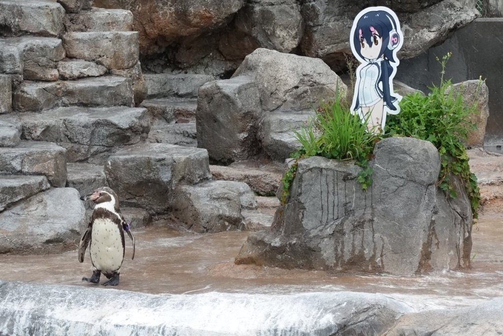 Tobu Zoo ends collaboration with Kemono Friends, but Hululu stays for Grape-kun