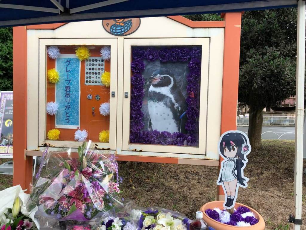Fans, Kemono Friends character designer, leave tributes for Grape-kun at Tobu Zoo