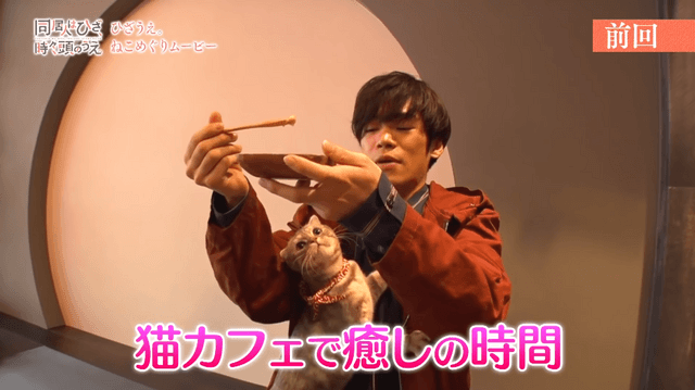 Seiyuu Kensho Ono tries working with cats in a cat cafe