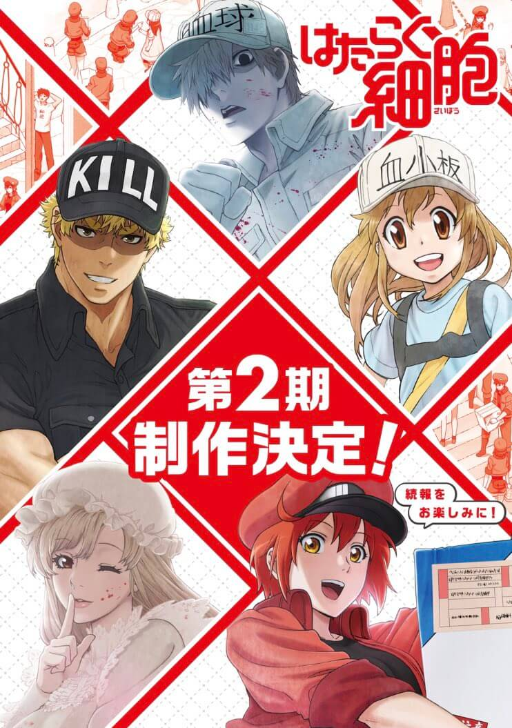 Cells At Work! TV anime is getting a second season