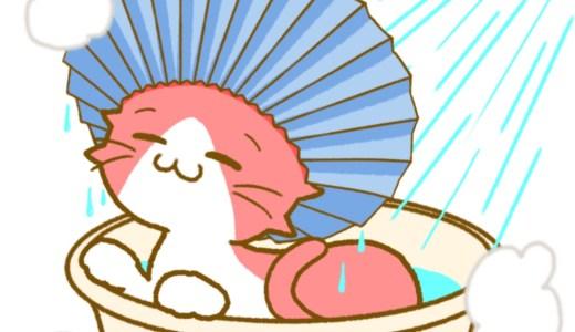 【飼い猫】シャンプーハットで入浴