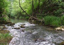 Lepterija Sokobanja reka Moravica