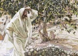 Иисус Христос у смоковницы