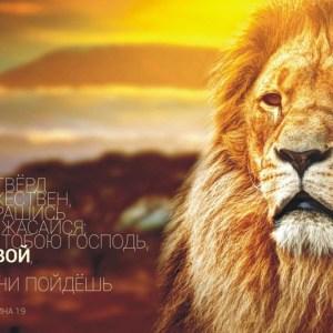 Христианская открытка Будь твёрд и мужествен