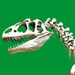 Существовали ли на Земле динозавры?