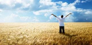 Стихотворение «Благодарность»