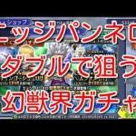 - 攻略動画 - 【DFFOO】エッジパンネロダブルで狙う 幻獣界ガチャ