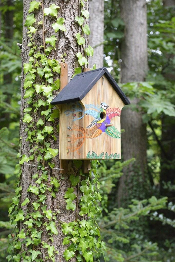 nichoir à oiseau / mésange en bois et carte mentale colorée