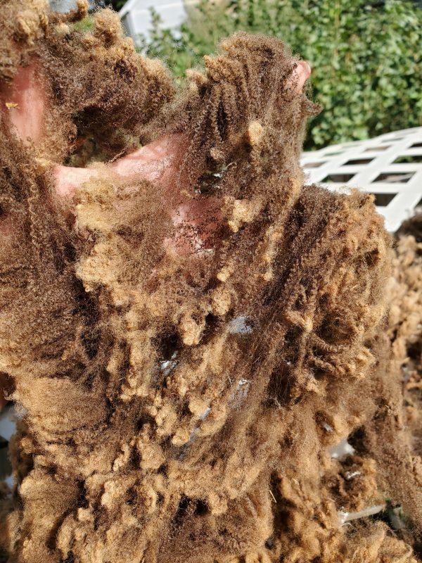 Raw Brown Fleece