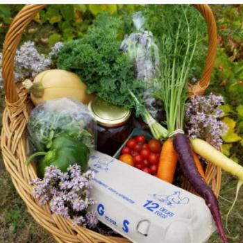 Veggie boxes
