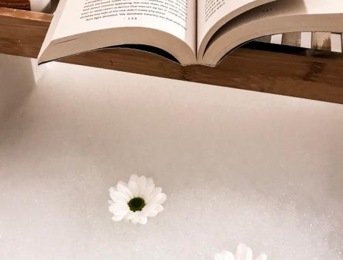 bookish bath