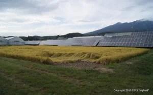 太陽光発電向き土地