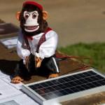 電気と脈絡のある申年、太陽光発電で更に頑張る