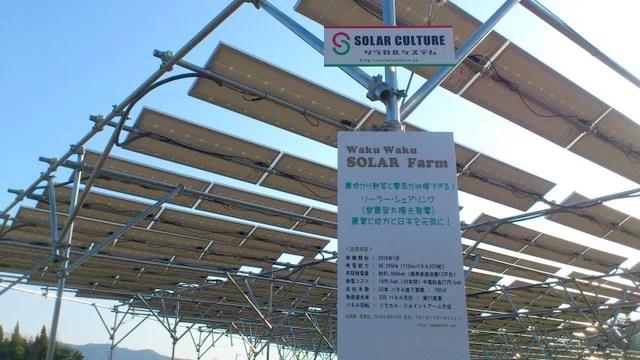 東広島のソーラーシェアリング「Waku Waku Solar Farm」