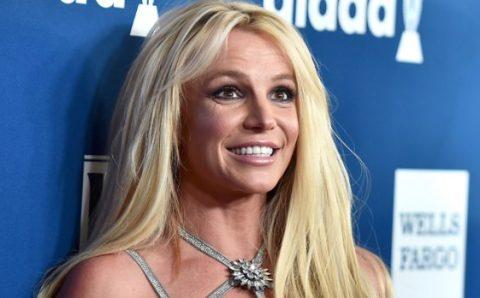 Perro sorprende cantando 'Toxic' de Britney Spears