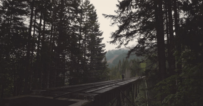 Northwest is a Beautiful Place Video