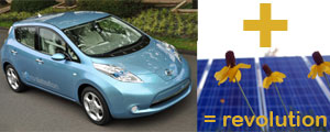 leaf-solar-rev-small
