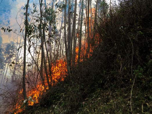 water-resources-ecuador-fire