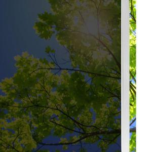 Solardiamond Windows Films - Medium Black