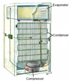 Fridge with Condenser on Rear