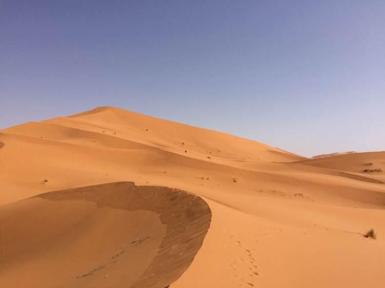 On the back of the Merzouga sand dunes