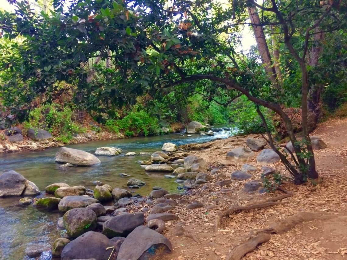 The Banias Nature Reserve
