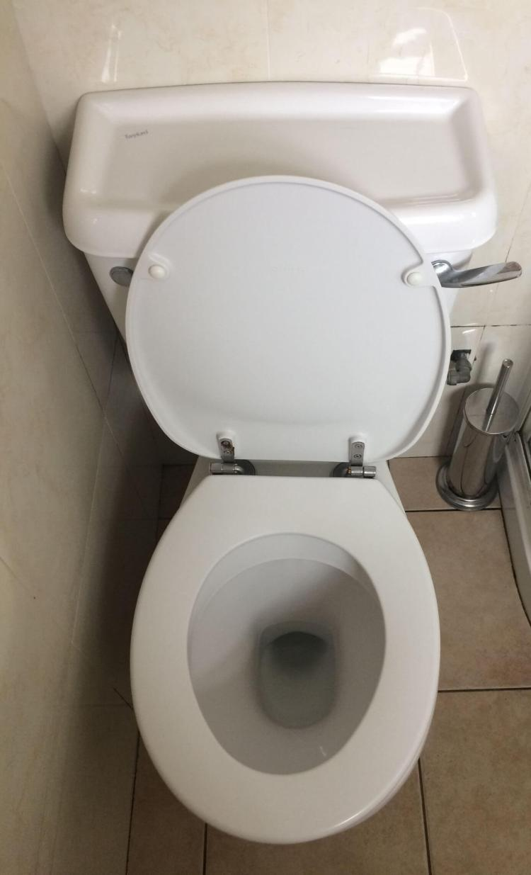 The toilet - nice and clean