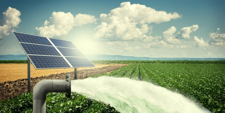 jual Solar Water Pump