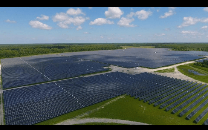 JinkoSolar to Supply 126 MW of Modules for a Utility PV Project in Chile