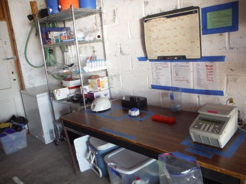 Molecular Laboratory up and running in BLA station garage. Special thanks to USD for the centrifuge (left), and to Thermo Fisher for the loan of the PCR machine (right).