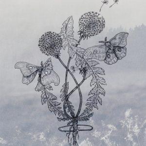 2020 - Dandelions