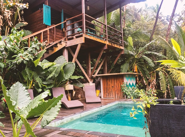 A tree house and plunge pool from the firefly bed and breakfast in Bocas del Toro, Panama.