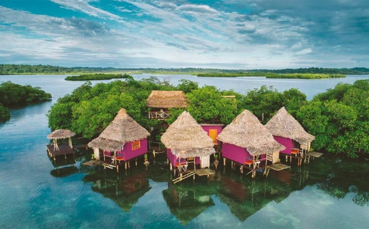 Purple and pink painted overwater bungalows with thatch roofs on a mangrove island in Bocas del Toro Panama.