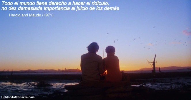 frases Harold y Maude