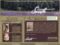 Santé Day Spa Website