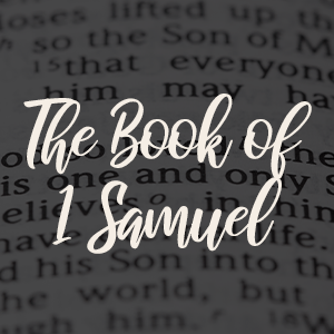 book of samuel soldiers for faith