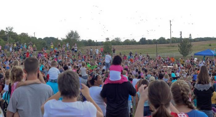 Oakgrove Butterfly festival