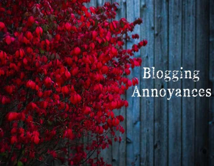 blogging annoyances