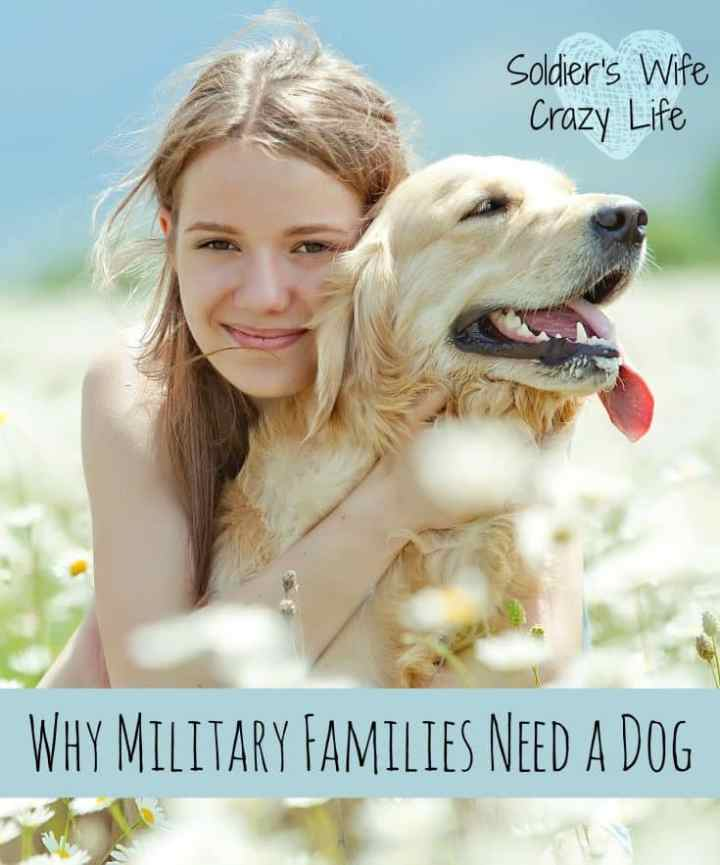 Why Military Families Need a Dog