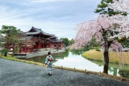 Kyoto, Uji, Byodo-in ( Soleil Levant 75 )