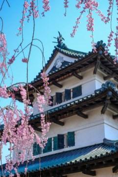 Chateau Hirosaki, printemps ( Soleil Levant 75 )