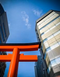 Kobe ( Copyright Soleil Levant 75 )
