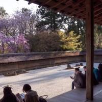 Kyoto: Le jardin sec du Ryoan-ji ( Karesansui )..