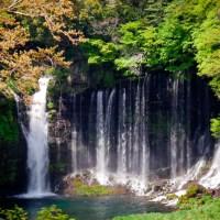 Parc national Fuji-Hakone-Izu, les chutes d'eau Shiraito..