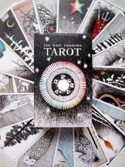 wild-unknown-tarot