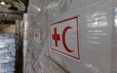 El futuro de la Cruz Roja y la Media Luna Roja
