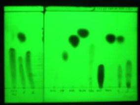 Espectrofotometría ultravioleta: técnica para conocer la concentración del principio activo de la muestra