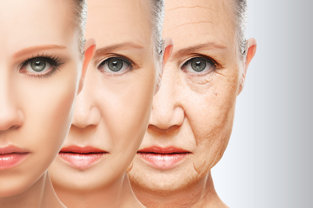 Je vek v našich génoch?