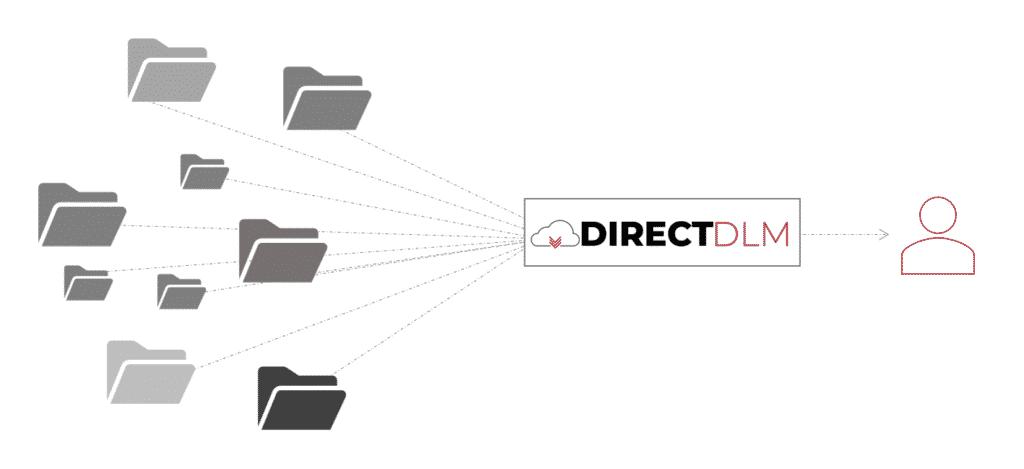 Direct DLM Large File Catalog